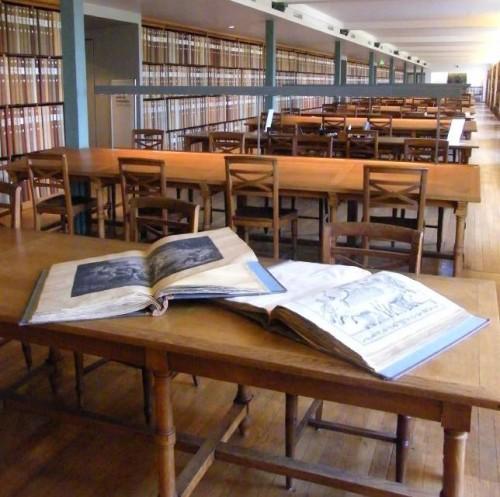 Salle de lecture de la bibliothèque des Arts Décoratifs © DR
