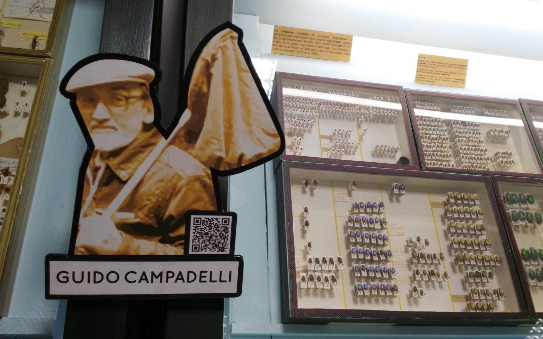 scientificamente PARLANDO – Museo Civico di Storia Naturale, Ferrara